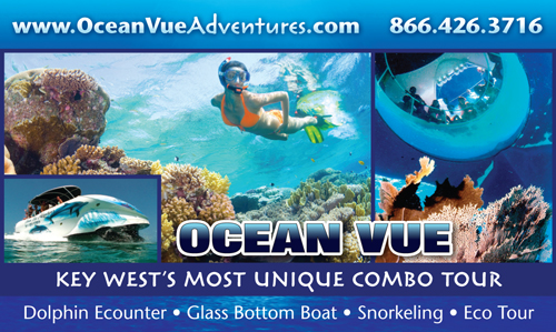 Ocean Vue Adventures